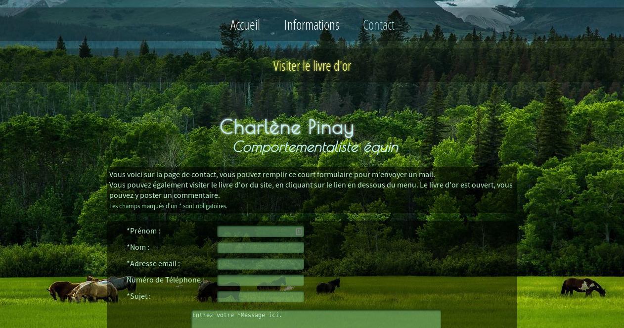 screenshot projet cpinay